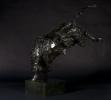bucking-bull-077