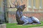 deer-brochure-123