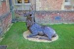 deer-brochure-126