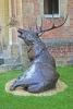 deer-brochure-128