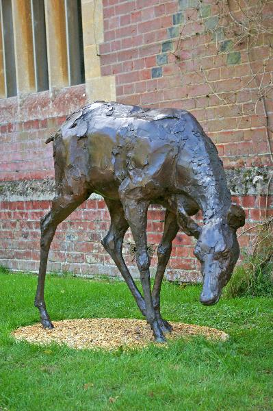 deer-brochure-116