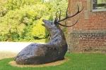deer-brochure-129