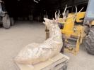 deer-brochure-101