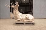 deer-brochure-104