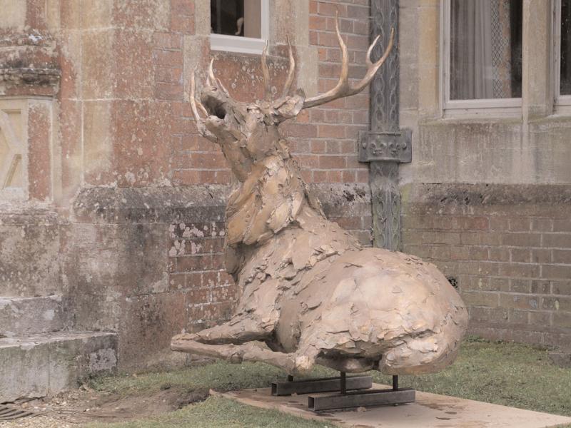 deer-brochure-109