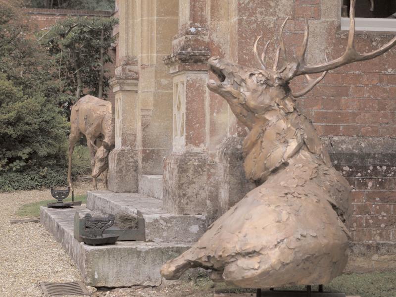 deer-brochure-110