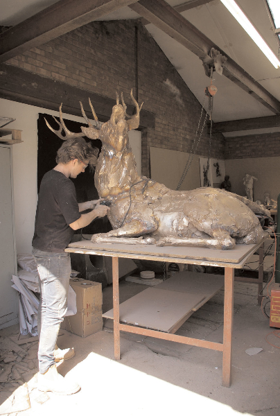 deer-brochure-089