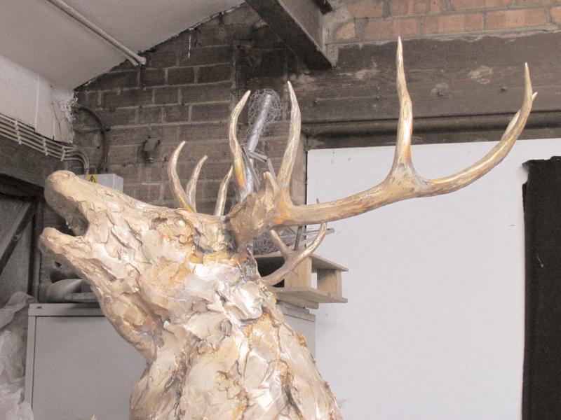 deer-brochure-092