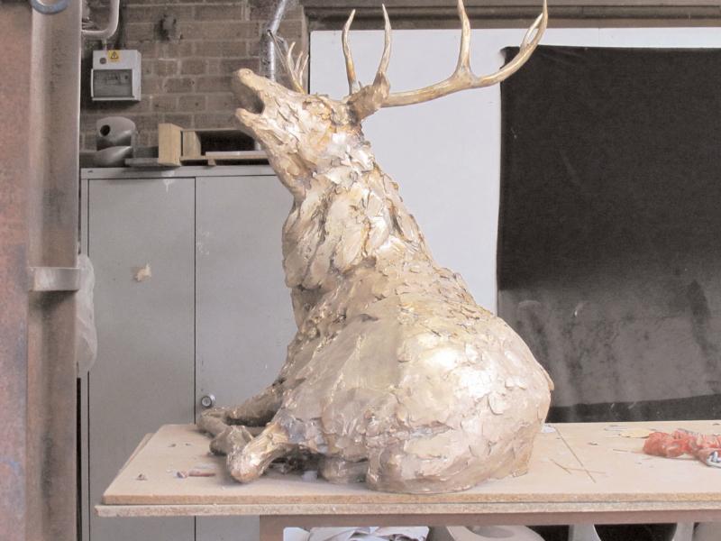 deer-brochure-094