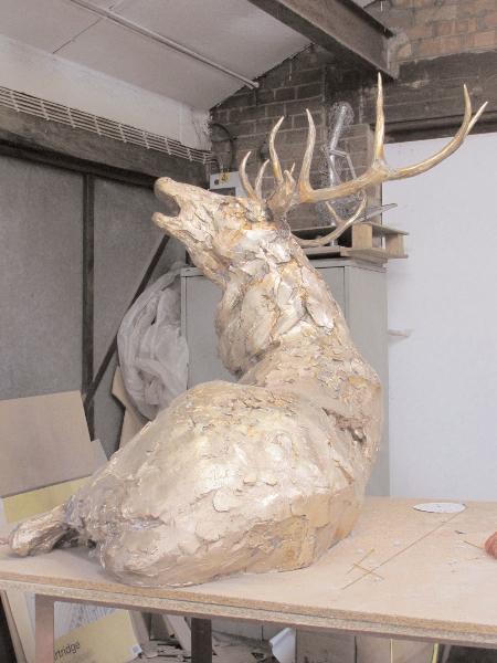 deer-brochure-097