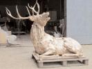 deer-brochure-103