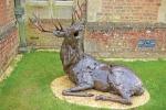 deer-brochure-127