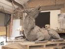 deer-brochure-031