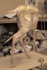 deer-brochure-043