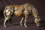 grazing-hhorse-study-060