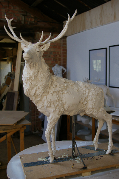 red-deer-pics-008