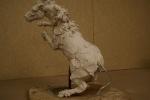 stalion-maquette-15