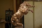 stalion-bare-bronze-1